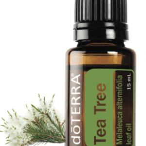 Tea Tree Pure Essential Oil 15 ml