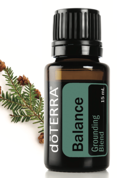 Balance (Grounding Blend) Pure Essential Oil 15 ml